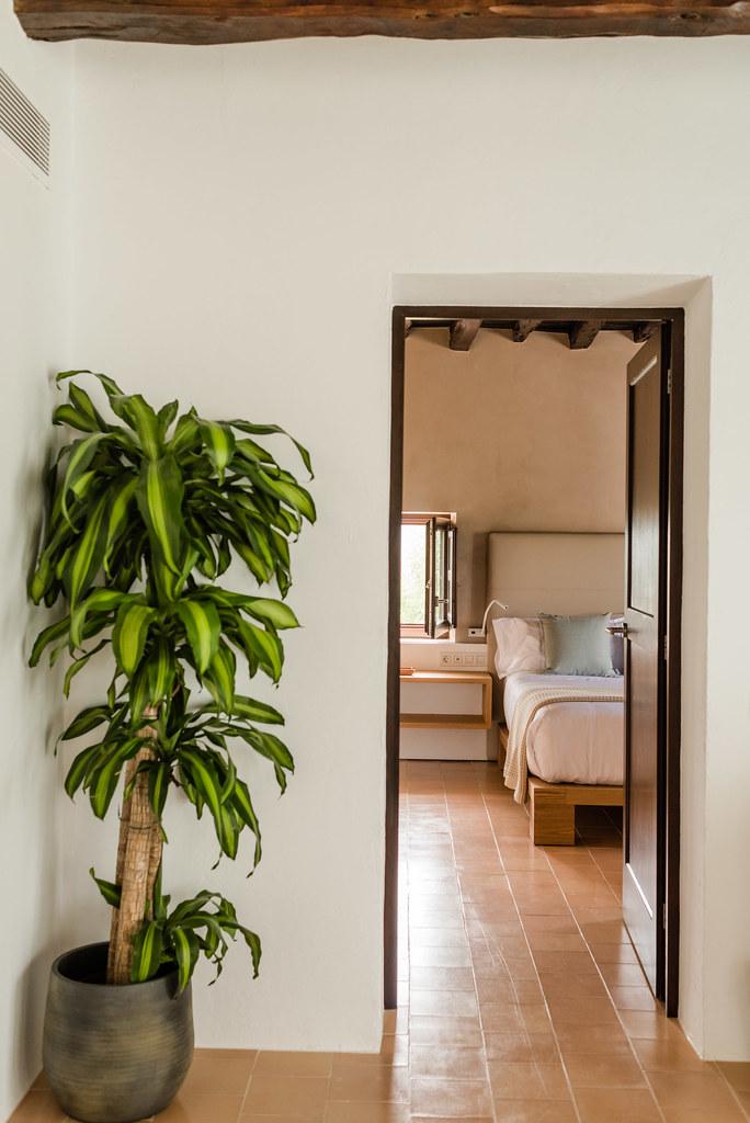 https://www.white-ibiza.com/wp-content/uploads/2020/01/ibiza-hotels-safragell-2019-04.jpg