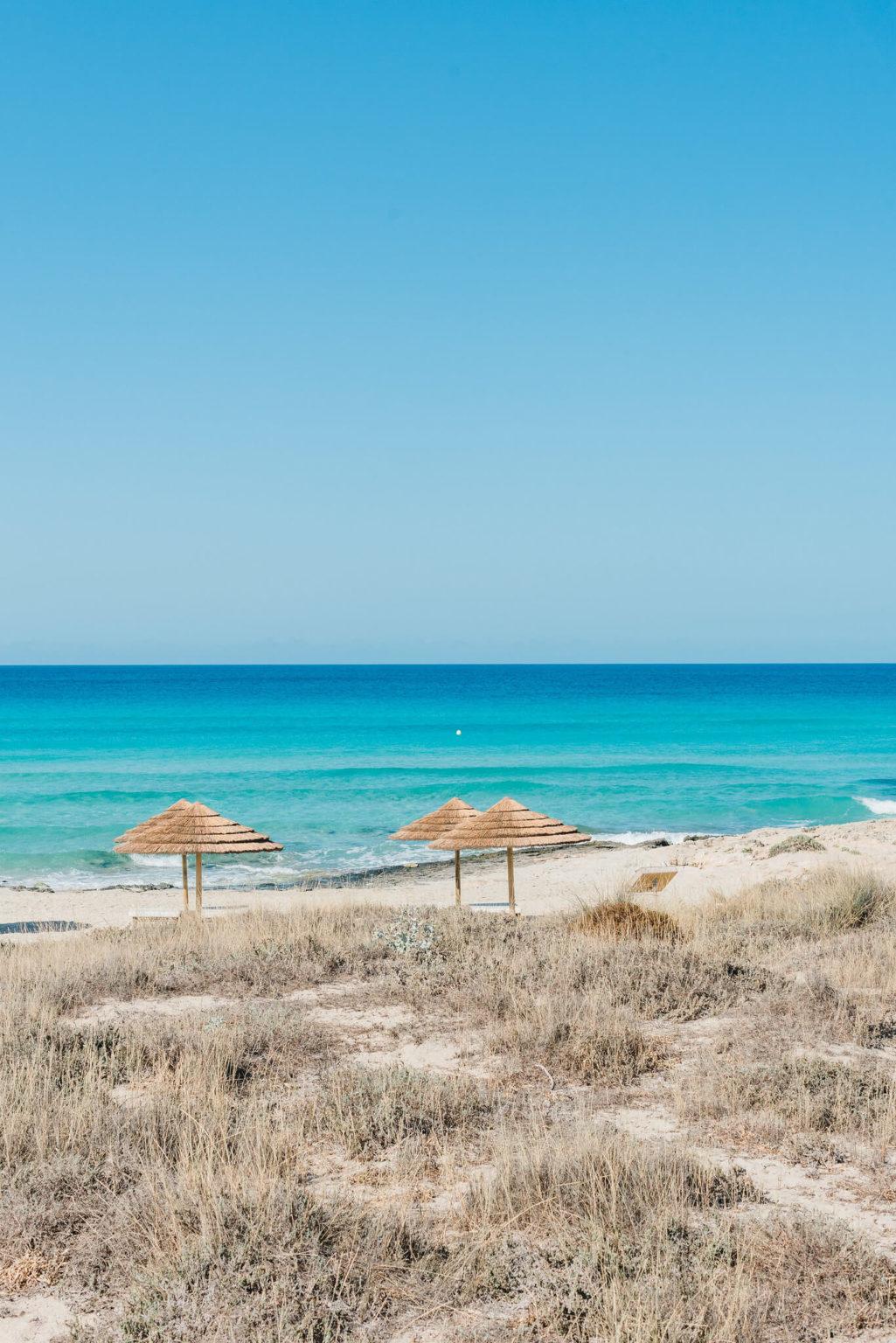 https://www.white-ibiza.com/wp-content/uploads/2020/03/formentera-beach-restaurants-flipper-2020-03-1025x1536.jpg