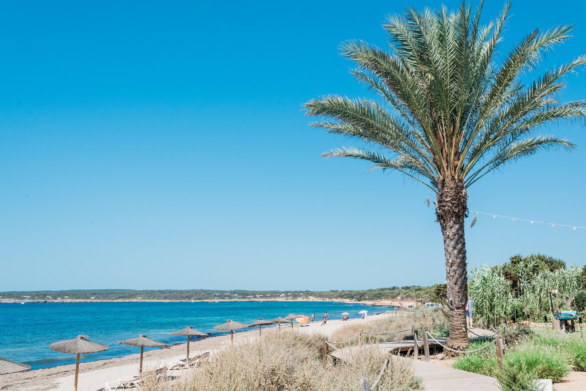 https://www.white-ibiza.com/wp-content/uploads/2020/03/formentera-beaches-migjorn-2020-04.jpg