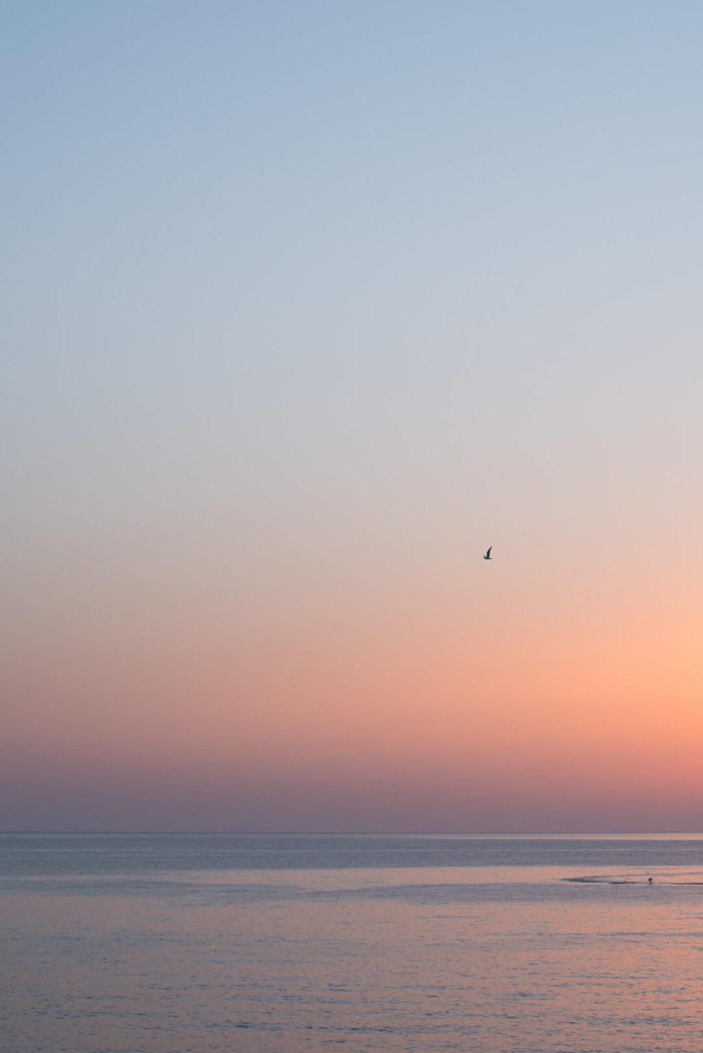 https://www.white-ibiza.com/wp-content/uploads/2020/03/formentera-sunsets-2020-07-1025x1536.jpg