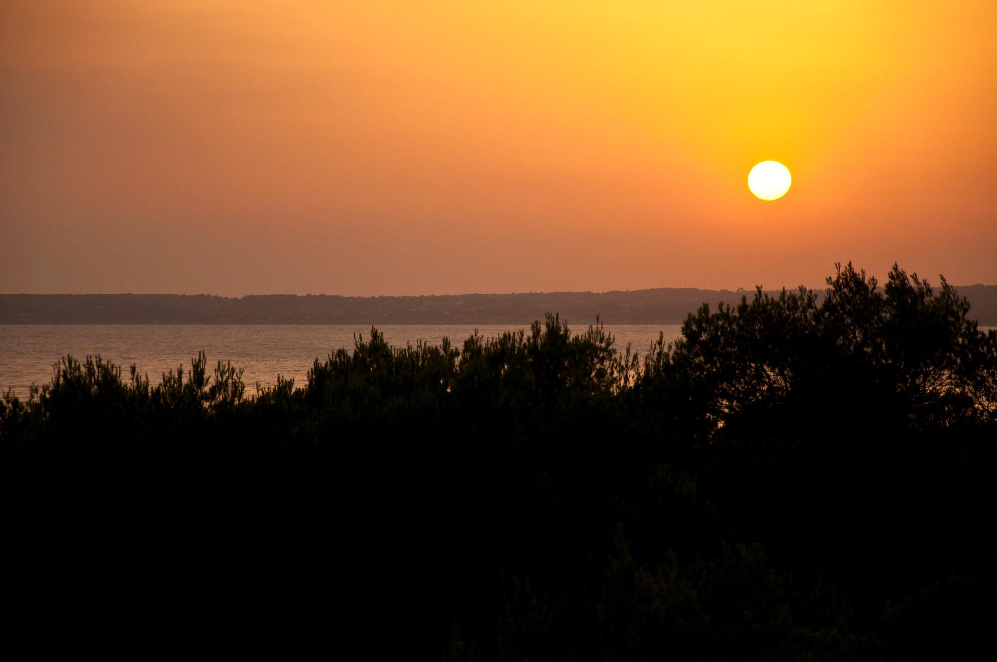 https://www.white-ibiza.com/wp-content/uploads/2020/03/formentera-sunsets-2020-09.jpg