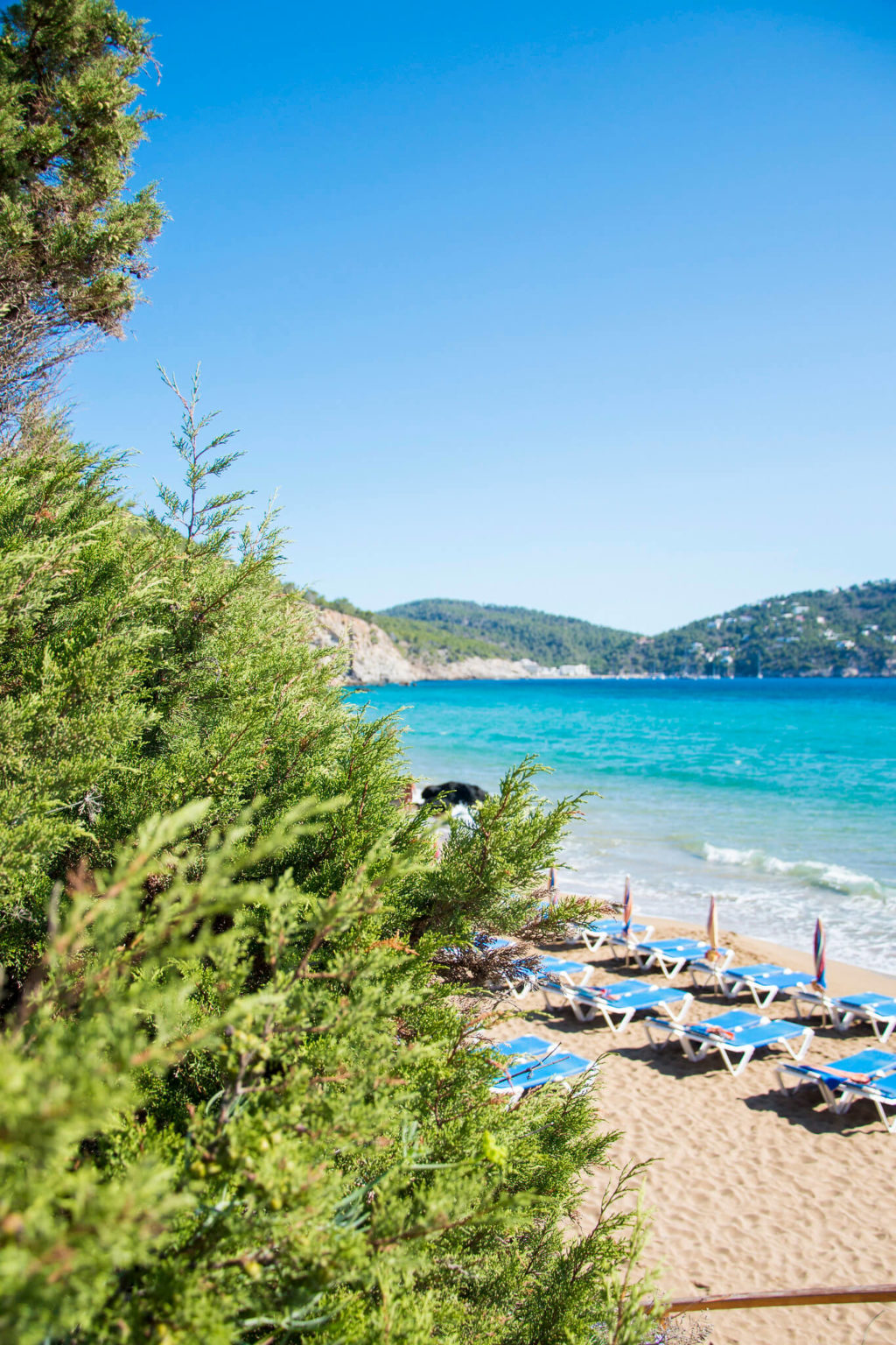 https://www.white-ibiza.com/wp-content/uploads/2020/03/ibiza-beaches-aguas-blancas-06-1024x1536.jpg