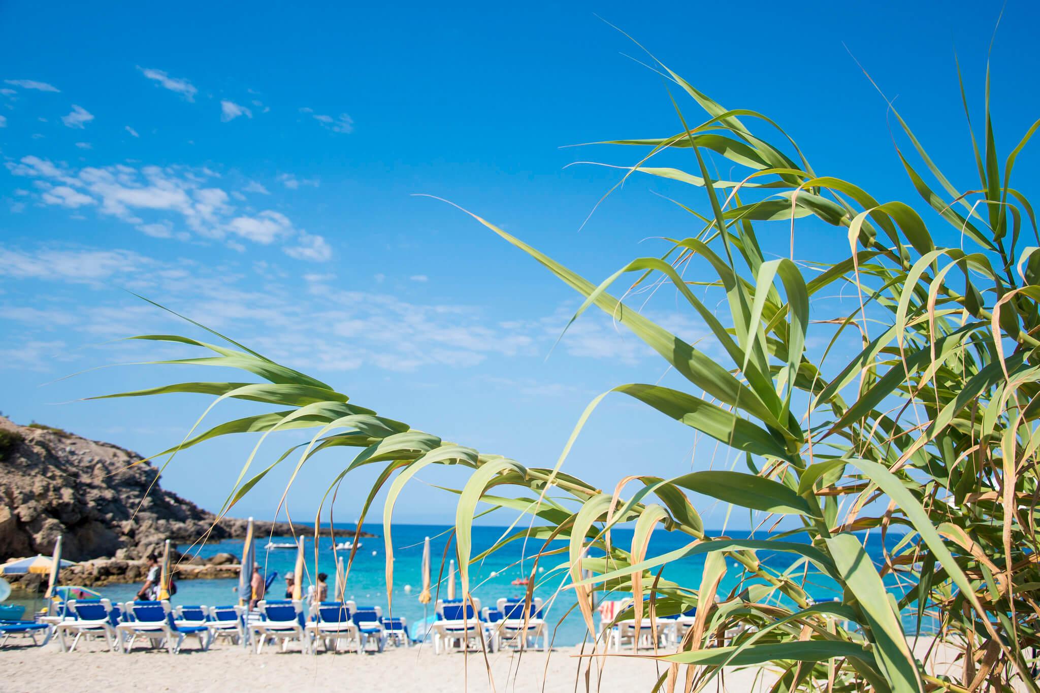 https://www.white-ibiza.com/wp-content/uploads/2020/03/ibiza-beaches-cala-codolar-02.jpg