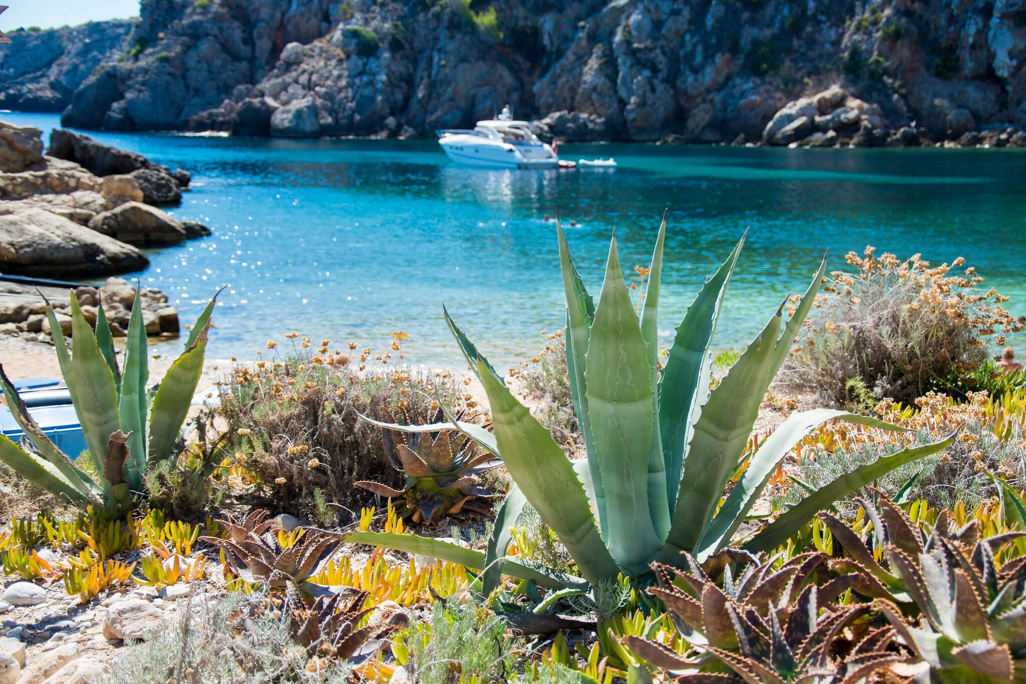 https://www.white-ibiza.com/wp-content/uploads/2020/03/ibiza-beaches-cala-den-serra-02.jpg