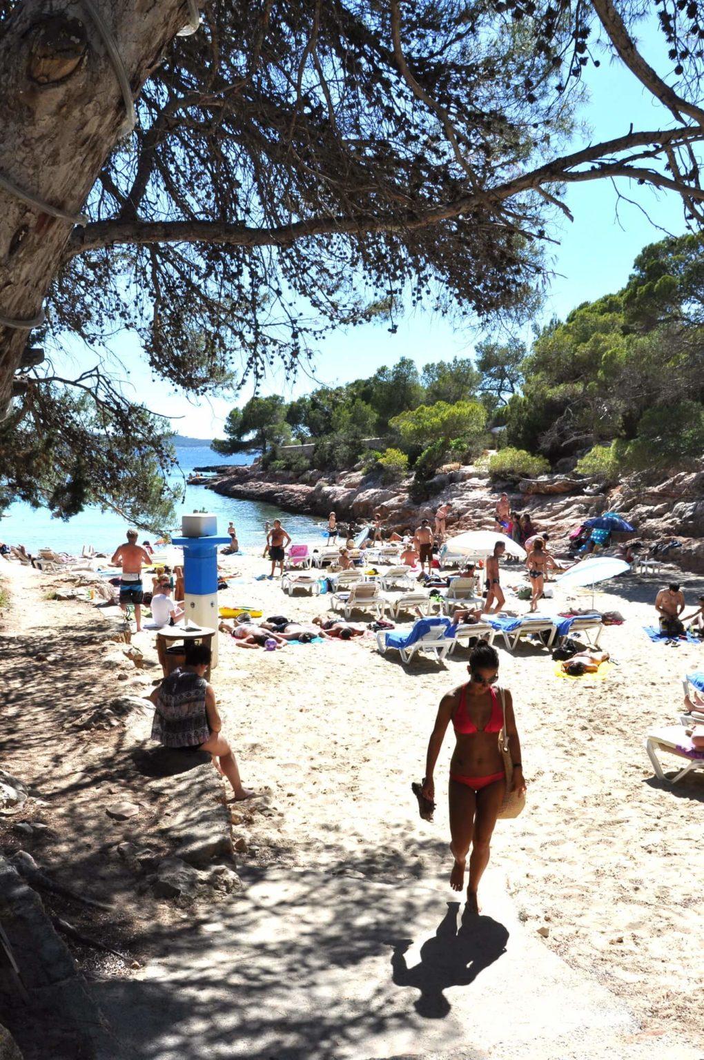 https://www.white-ibiza.com/wp-content/uploads/2020/03/ibiza-beaches-cala-gracioneta-03-1020x1536.jpg
