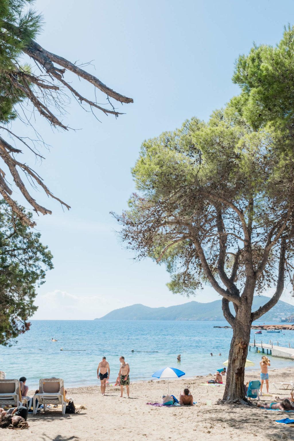 https://www.white-ibiza.com/wp-content/uploads/2020/03/ibiza-beaches-cala-pada-07-1025x1536.jpg
