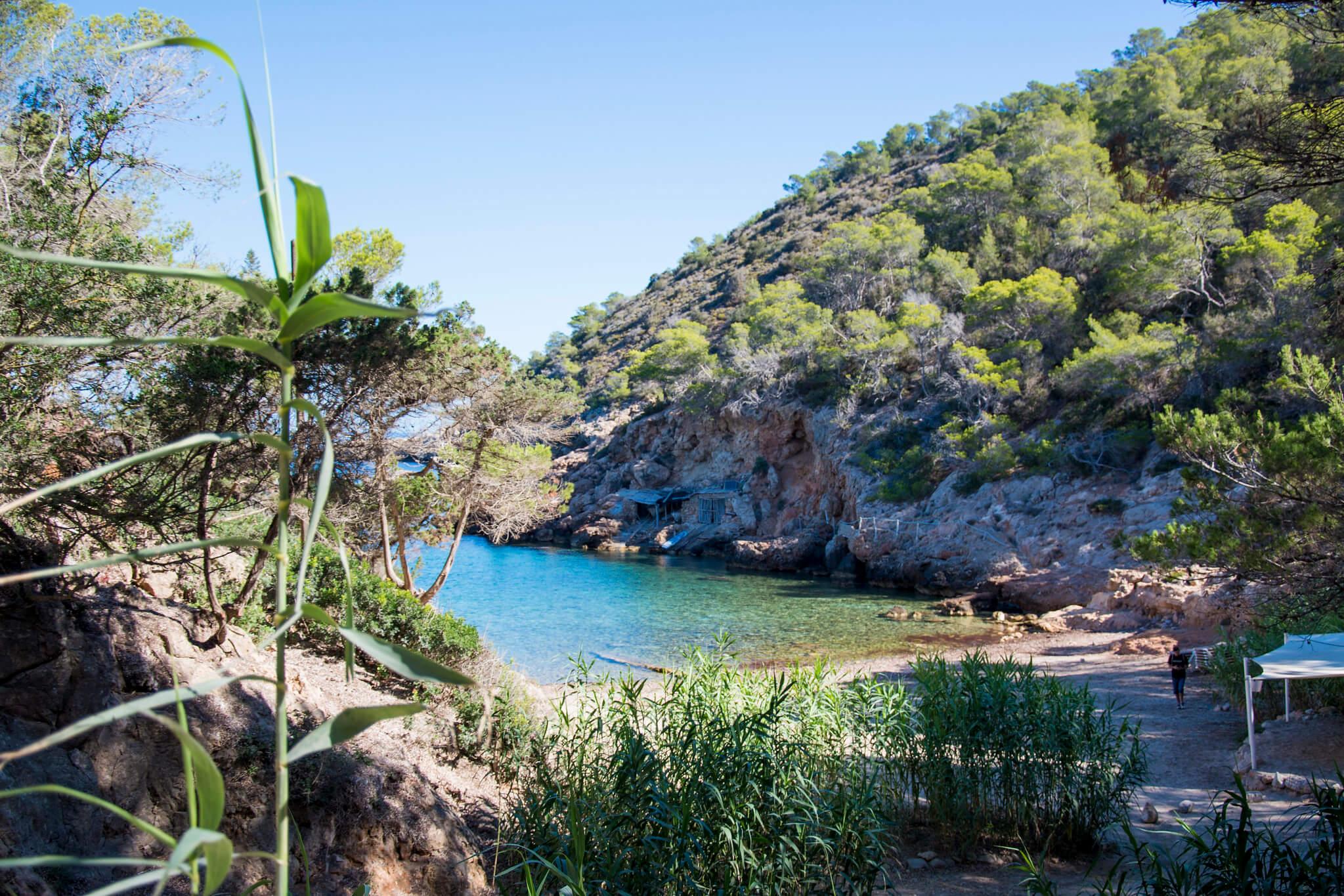 https://www.white-ibiza.com/wp-content/uploads/2020/03/ibiza-beaches-cala-xuclar-02.jpg