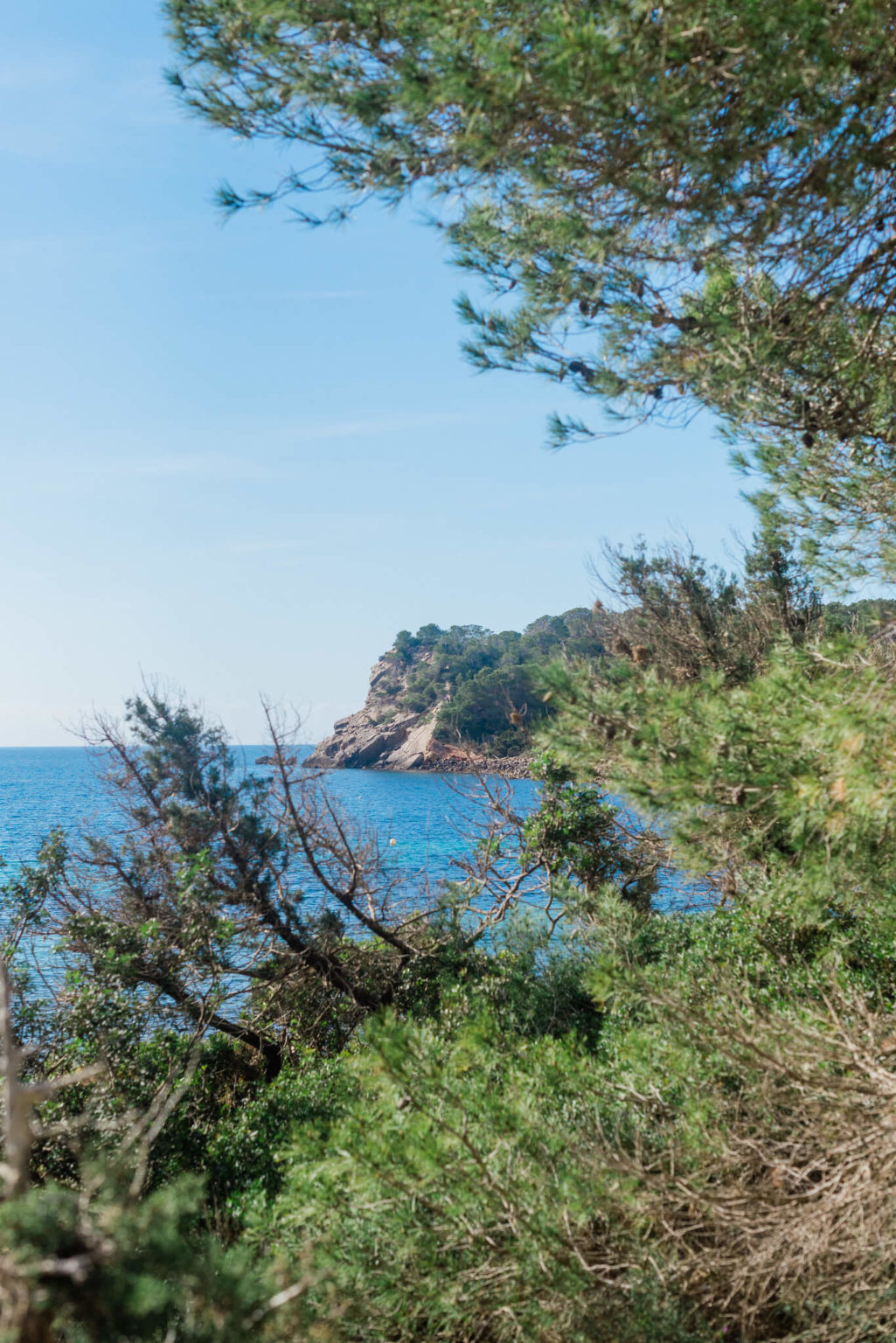 https://www.white-ibiza.com/wp-content/uploads/2020/03/ibiza-beaches-es-xarcu-05-1025x1536.jpg
