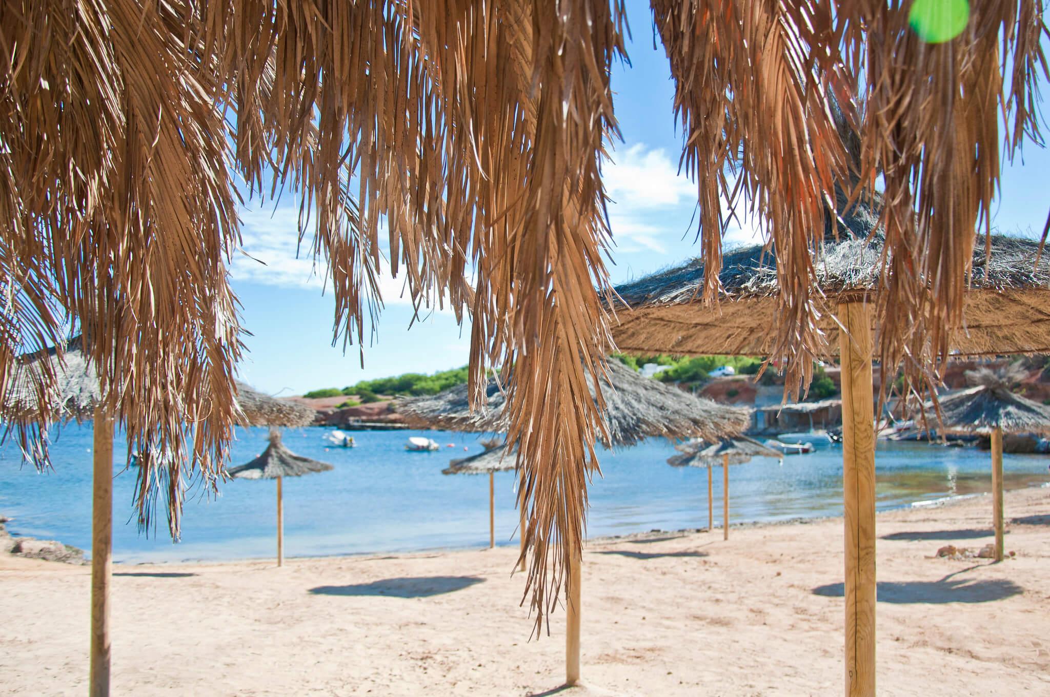 https://www.white-ibiza.com/wp-content/uploads/2020/03/ibiza-beaches-pou-des-lleo-05.jpg