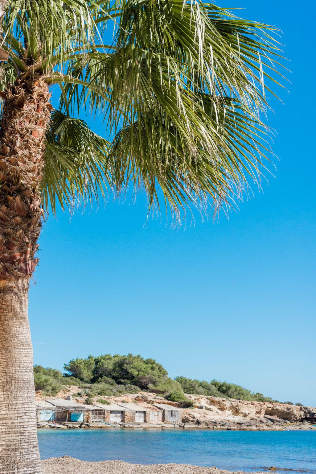 https://www.white-ibiza.com/wp-content/uploads/2020/03/ibiza-beaches-sestanyol-06-1025x1536.jpg