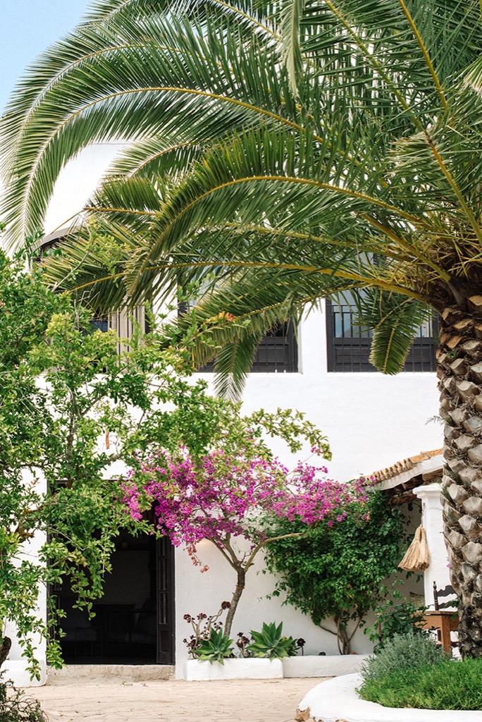 https://www.white-ibiza.com/wp-content/uploads/2020/03/ibiza-hotels-legado-ibiza-finca-2019-23.jpg