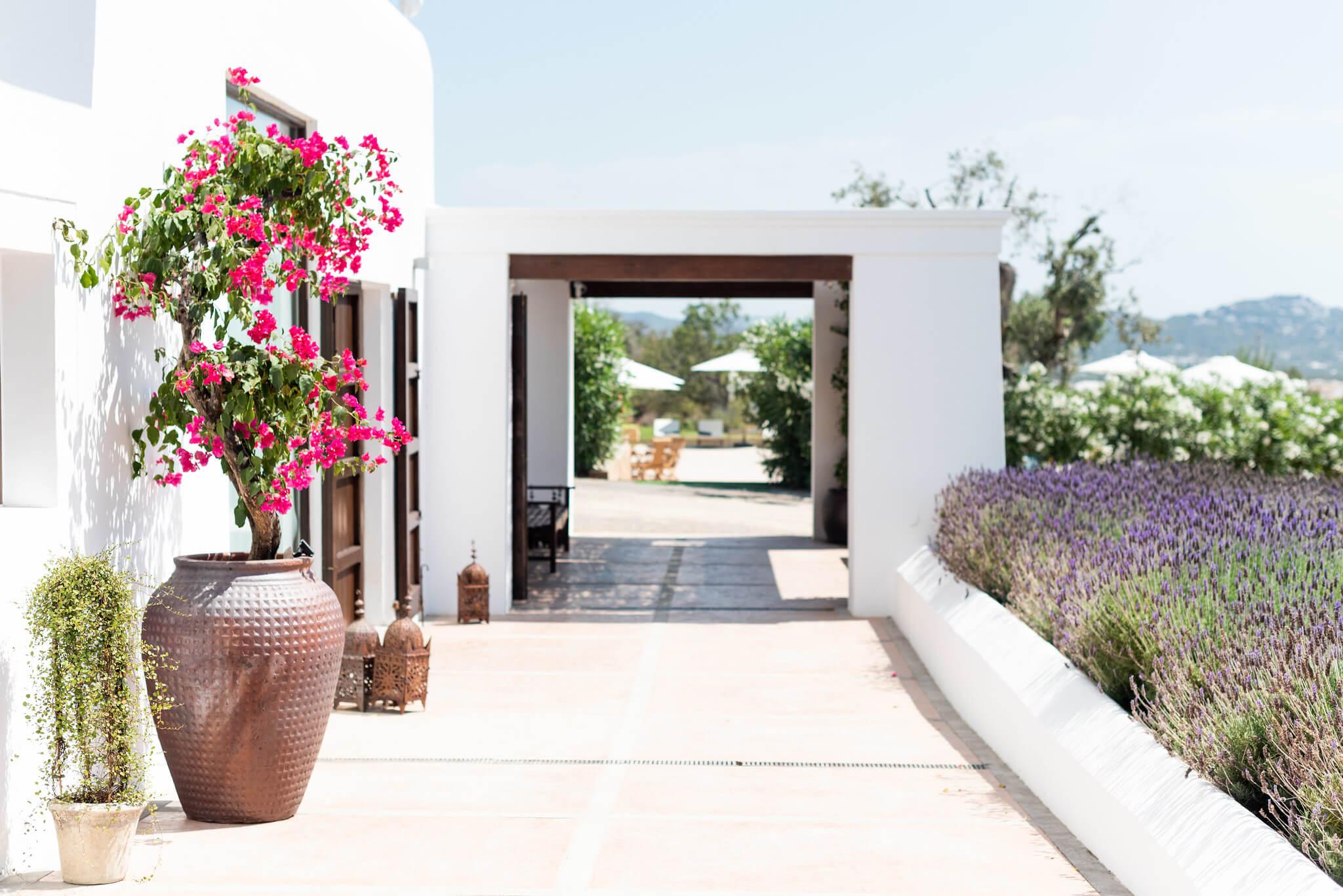 https://www.white-ibiza.com/wp-content/uploads/2020/03/white-ibiza-boutique-hotels-casa-maca-2020-03.jpg