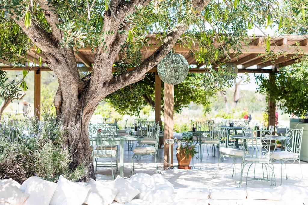 Aubergine Ibiza