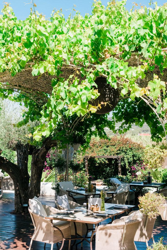 https://www.white-ibiza.com/wp-content/uploads/2020/03/white-ibiza-restaurants-la-veranda-2020-07.jpg