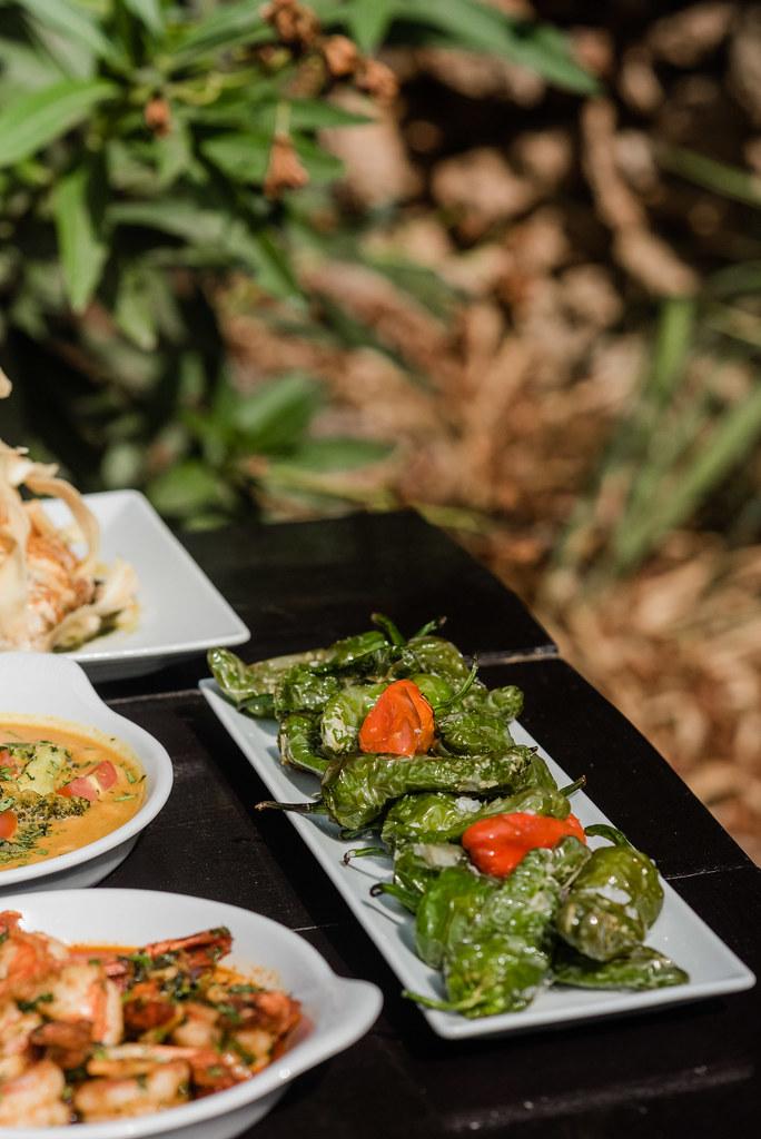 https://www.white-ibiza.com/wp-content/uploads/2020/03/white-ibiza-restaurants-tapas-ibiza-2020-09.jpg