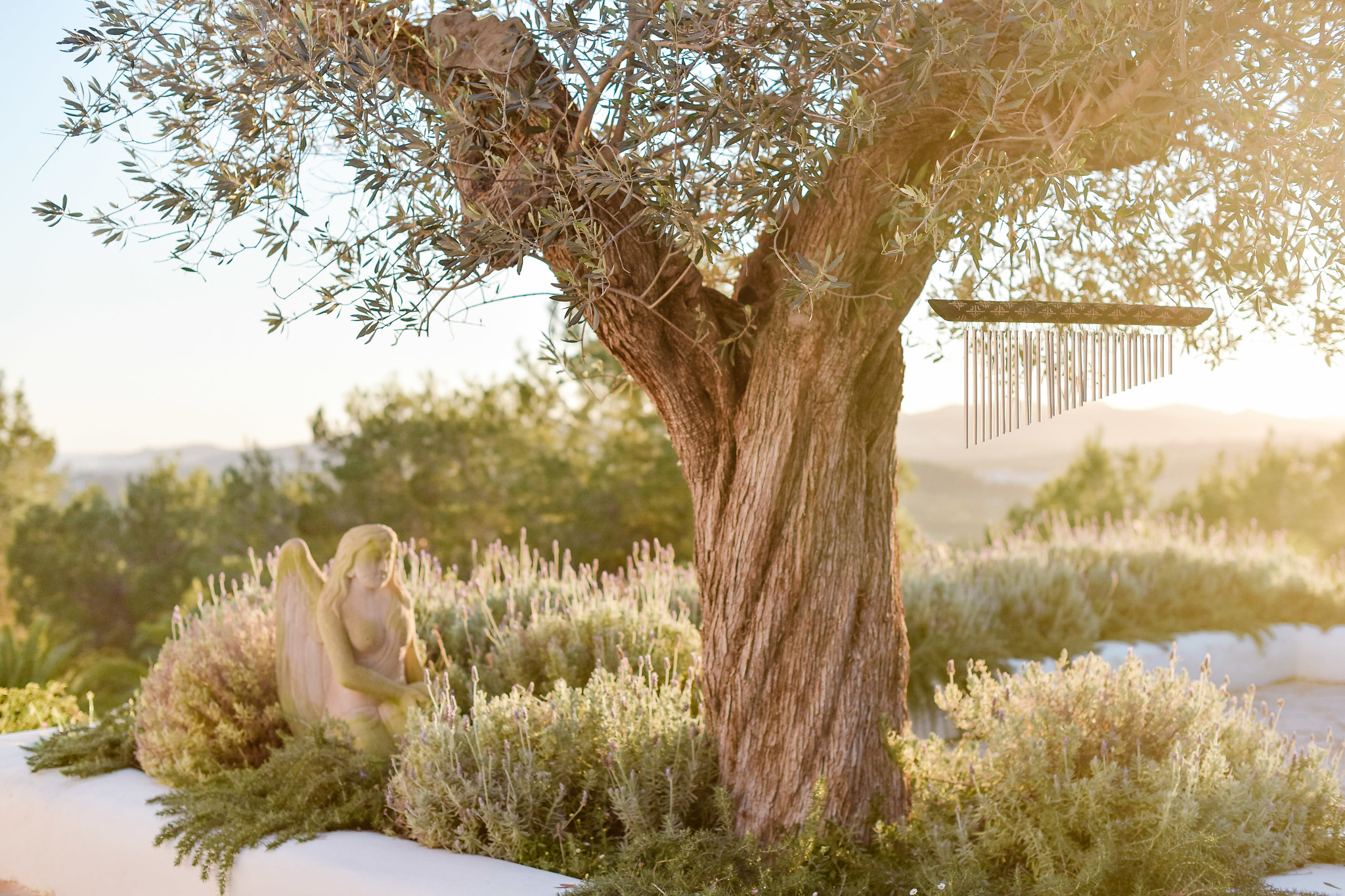 https://www.white-ibiza.com/wp-content/uploads/2020/05/white-ibiza-villas-can-lavanda-evening.jpg