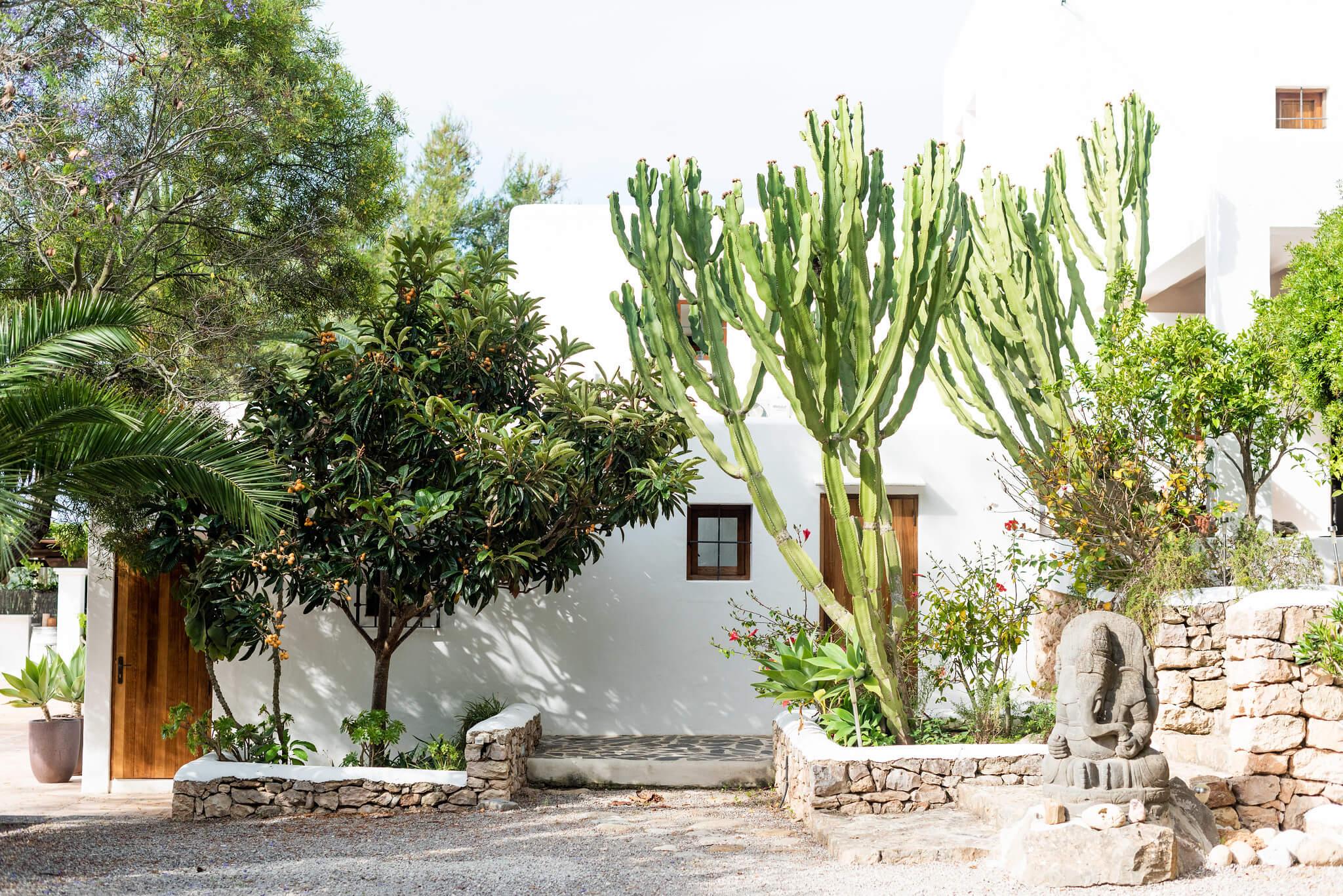 https://www.white-ibiza.com/wp-content/uploads/2020/05/white-ibiza-villas-can-lyra-exterior-cactus.jpg
