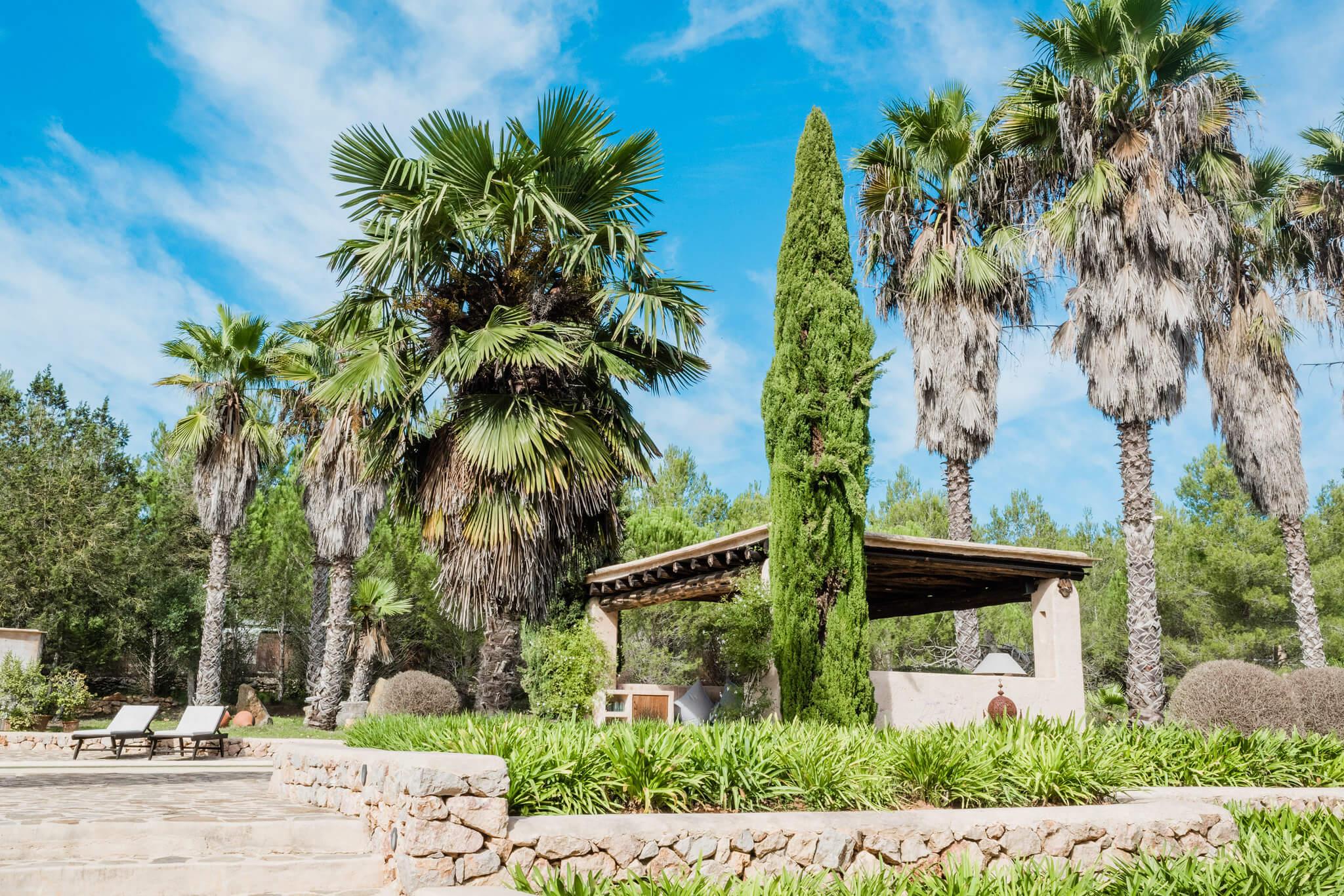 https://www.white-ibiza.com/wp-content/uploads/2020/05/white-ibiza-villas-can-sabina-exterior-trees.jpg