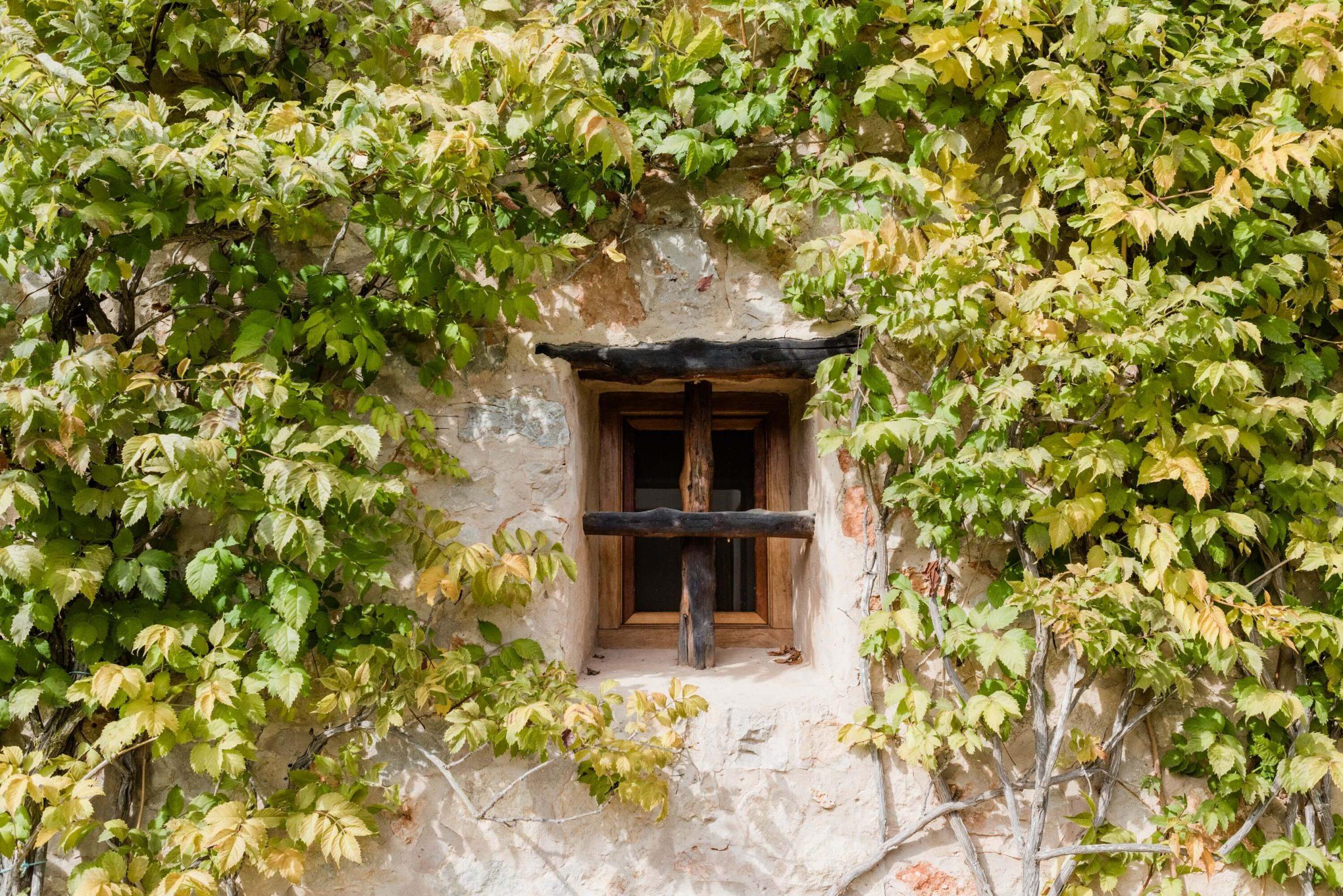 https://www.white-ibiza.com/wp-content/uploads/2020/05/white-ibiza-villas-can-sabina-exterior-window-2302x1536.jpg