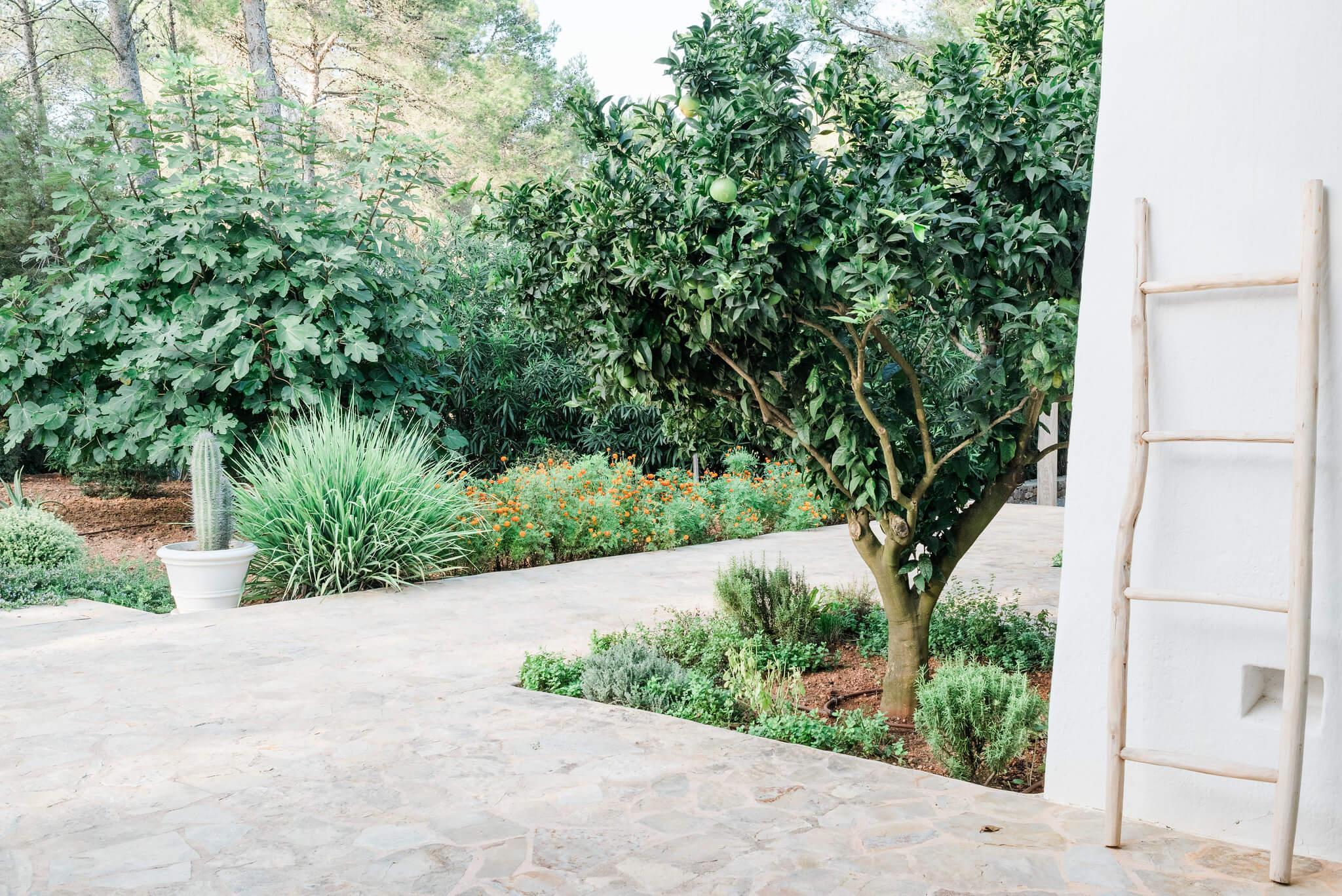 https://www.white-ibiza.com/wp-content/uploads/2020/05/white-ibiza-villas-can-terra-pathway.jpg
