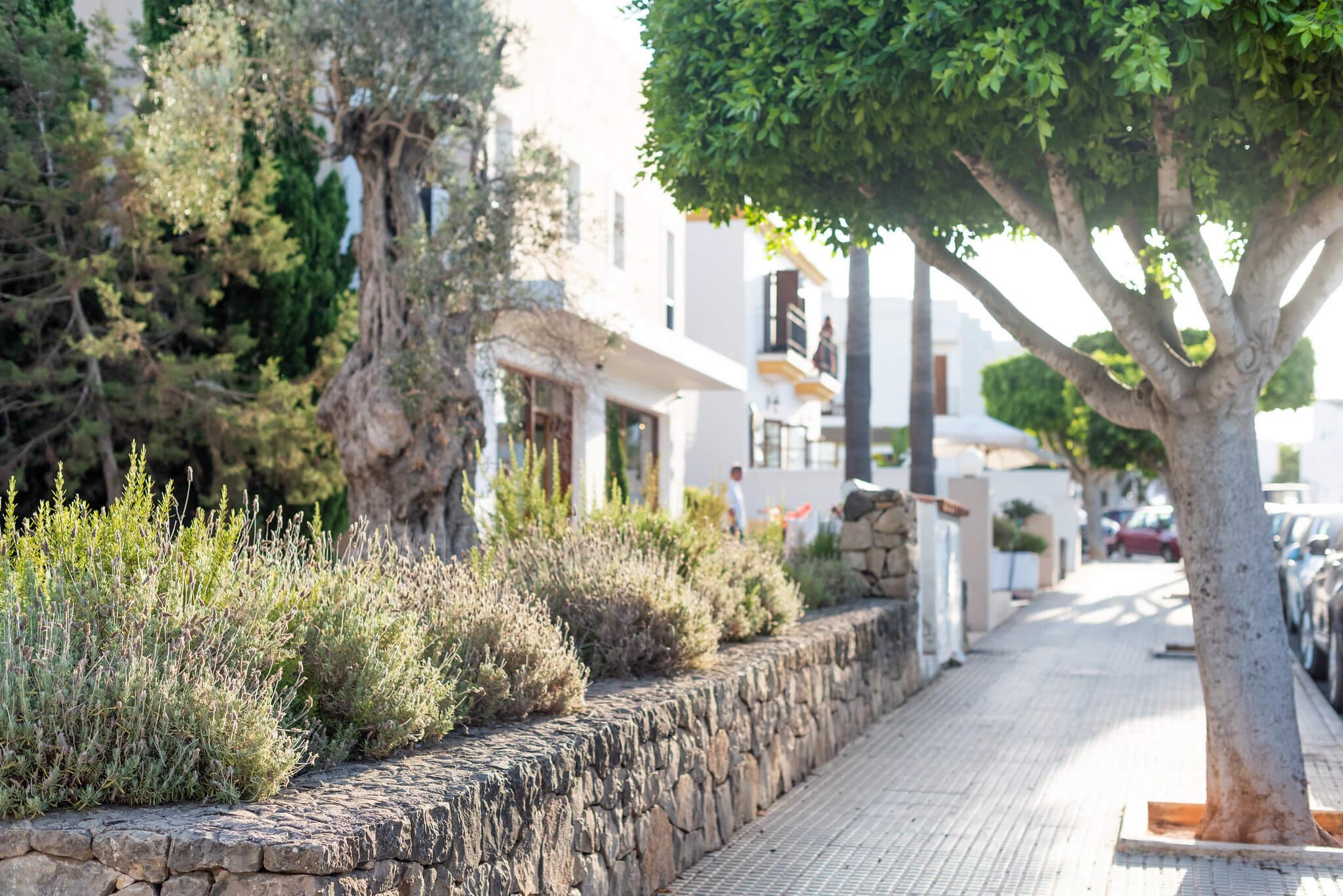 https://www.white-ibiza.com/wp-content/uploads/2020/05/white-ibiza-villas-where-to-buy-santa-gertrudis-02.jpg