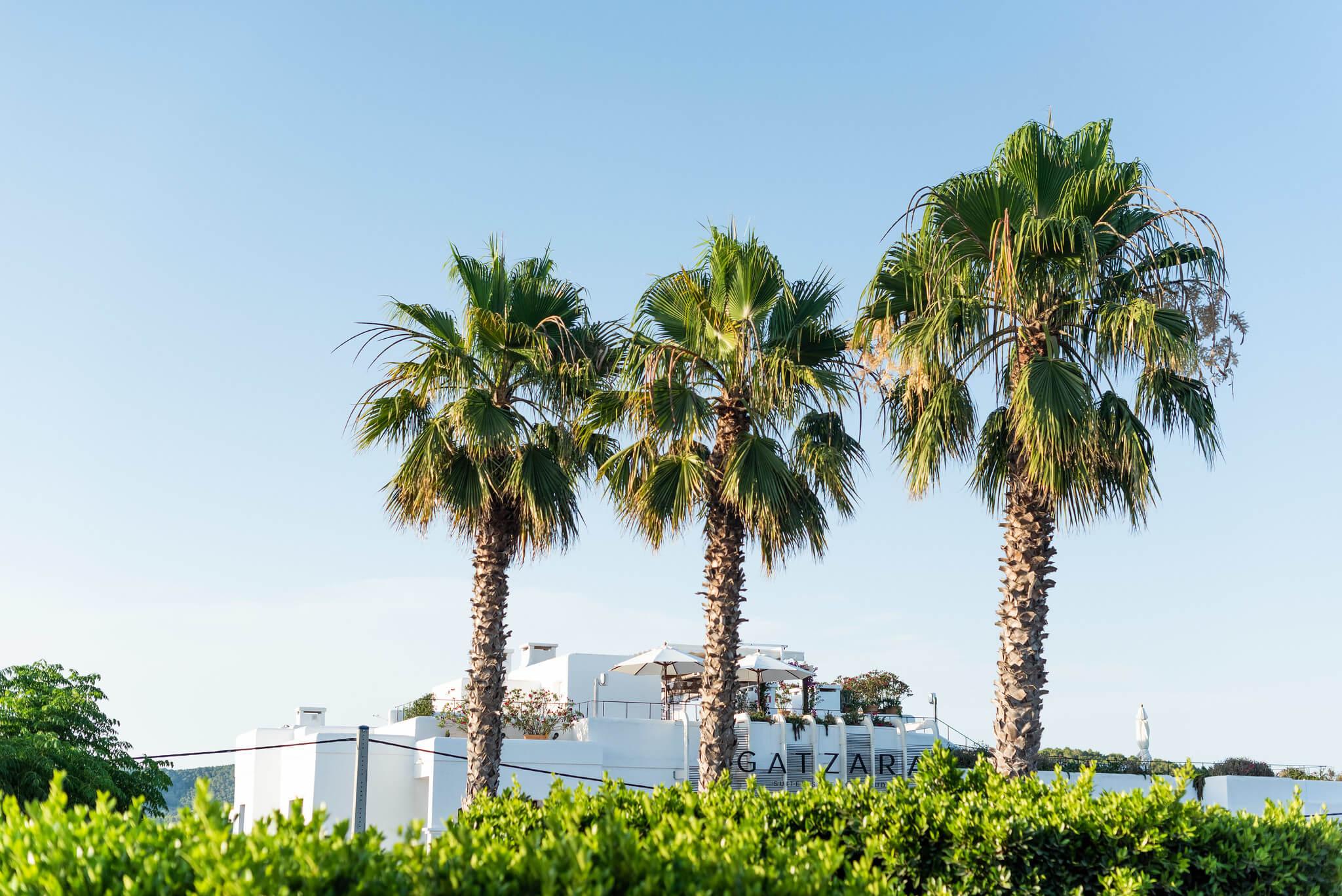 https://www.white-ibiza.com/wp-content/uploads/2020/05/white-ibiza-villas-where-to-buy-santa-gertrudis-04.jpg