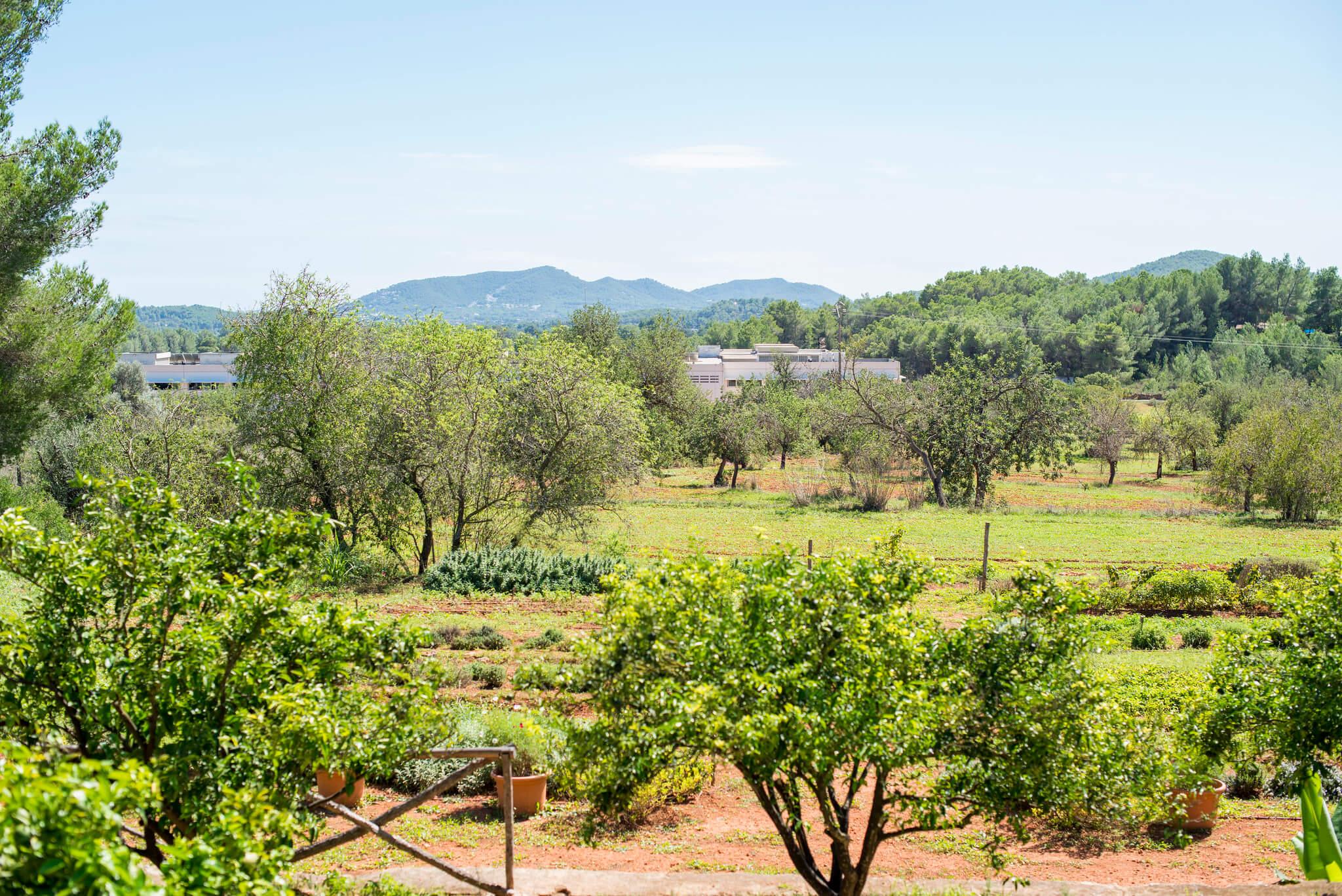https://www.white-ibiza.com/wp-content/uploads/2020/05/white-ibiza-villas-where-to-stay-san-lorenzo-06.jpg