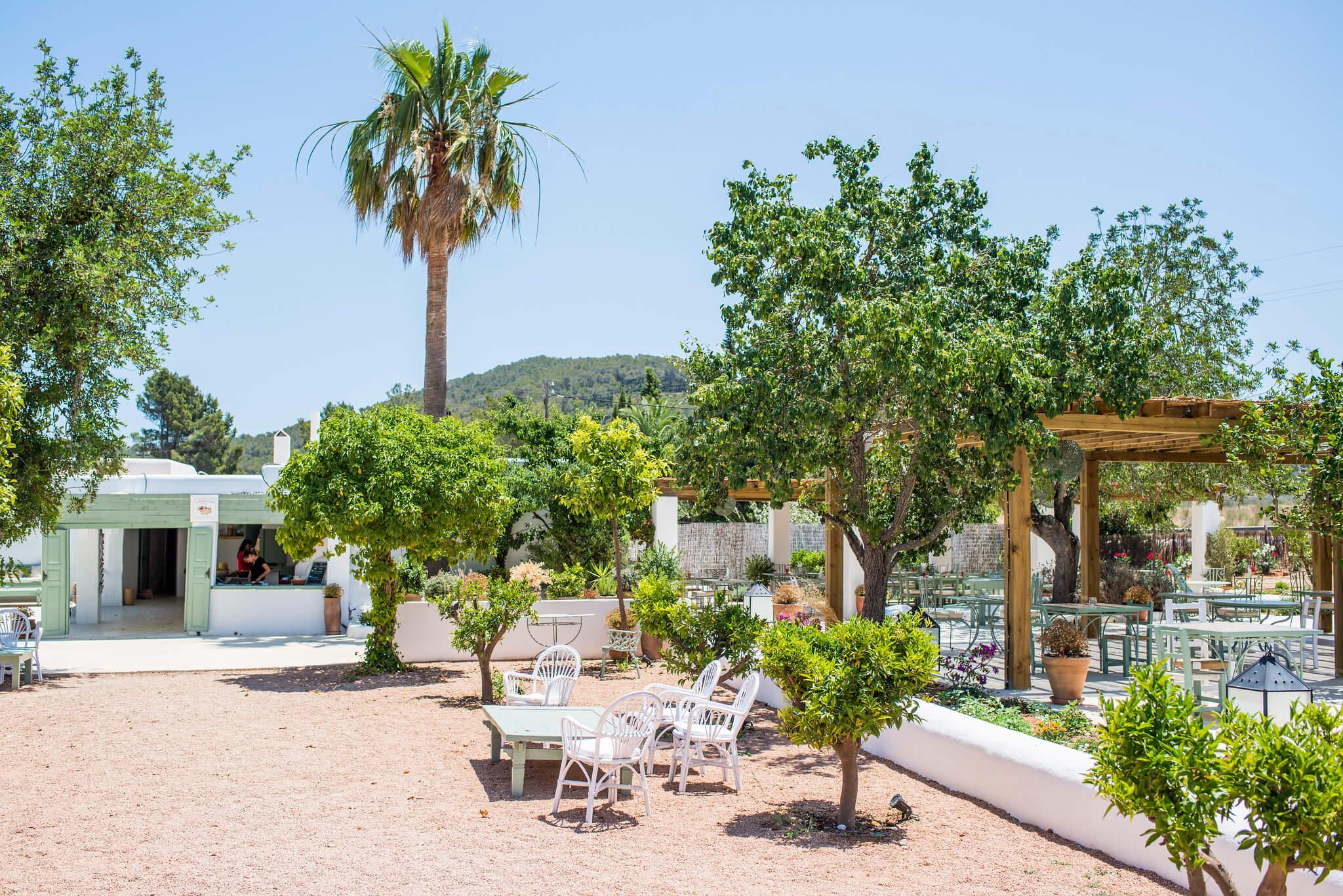 https://www.white-ibiza.com/wp-content/uploads/2020/05/white-ibiza-villas-where-to-stay-santa-gertrudis-03.jpg