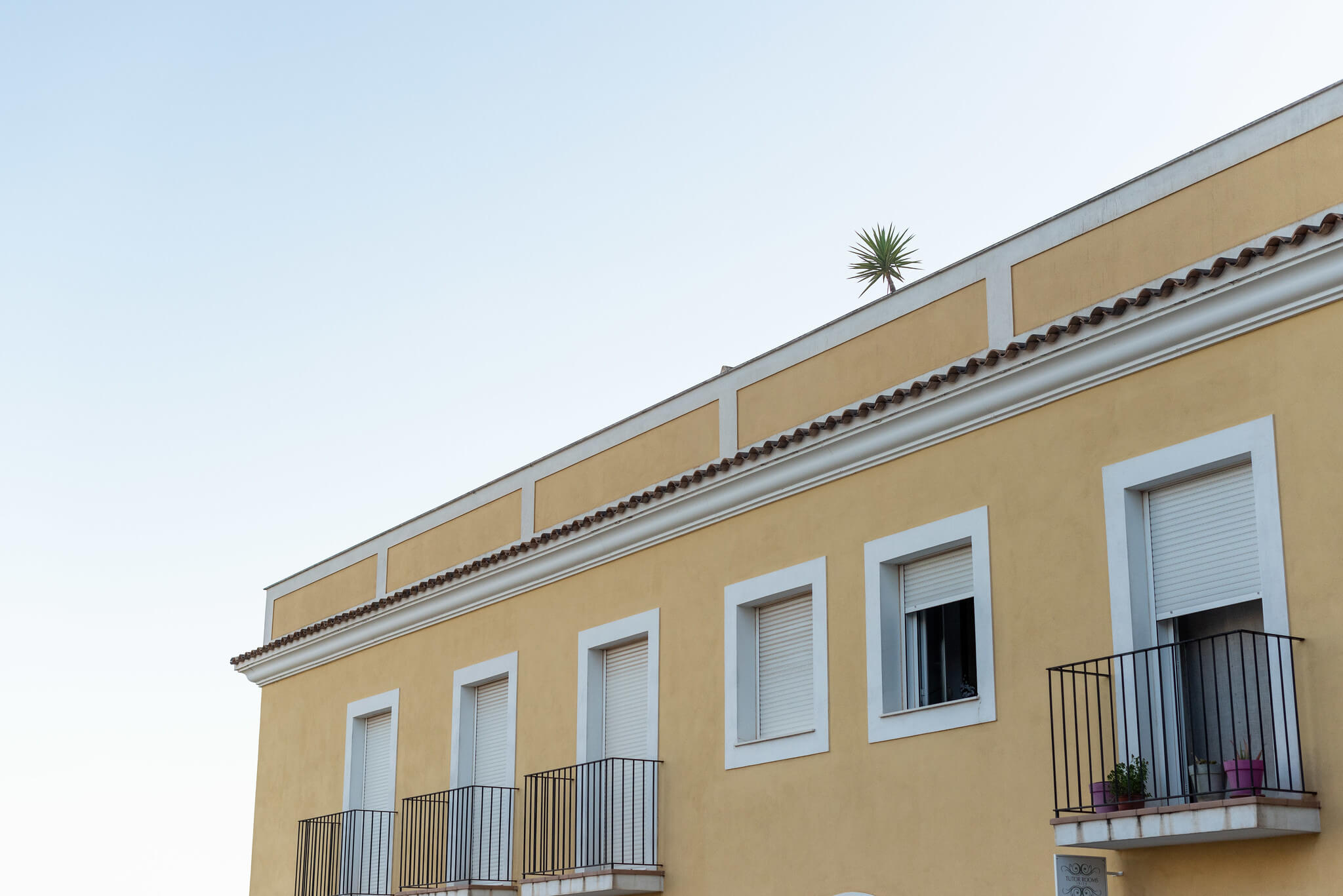 https://www.white-ibiza.com/wp-content/uploads/2020/05/white-ibiza-villas-where-to-stay-santa-gertrudis-06.jpg