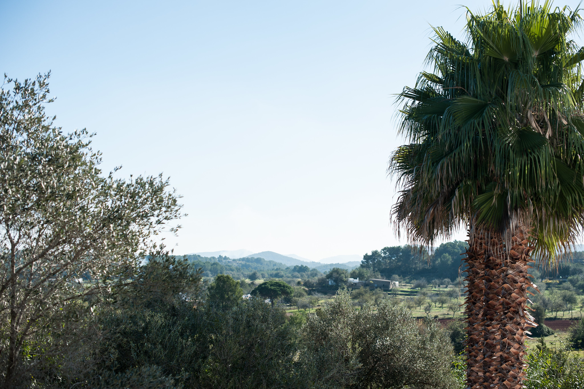 https://www.white-ibiza.com/wp-content/uploads/2020/06/white-ibiza-villas-can-blay-exterior-campo-view.jpg