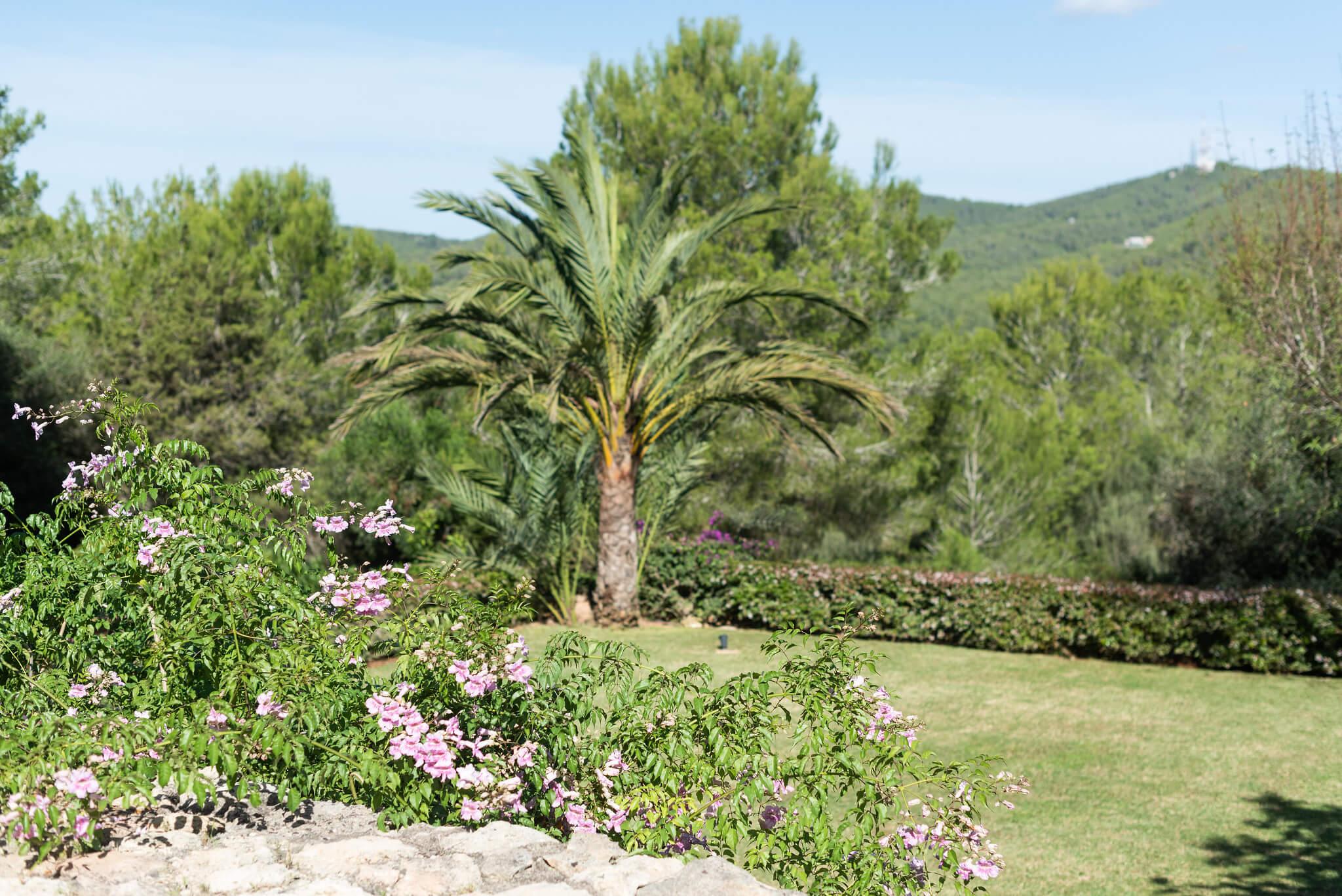 https://www.white-ibiza.com/wp-content/uploads/2020/06/white-ibiza-villas-casa-arabella-exterior-garden.jpg