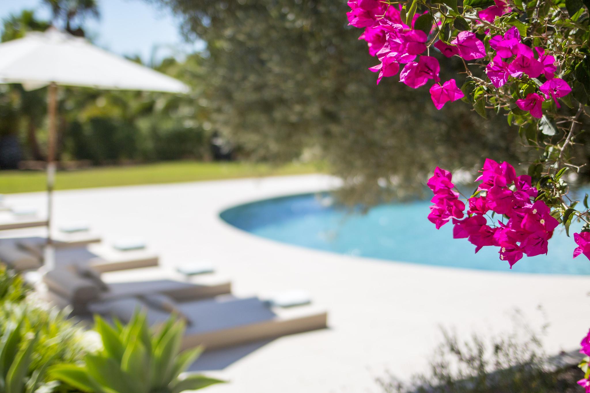 https://www.white-ibiza.com/wp-content/uploads/2020/06/white-ibiza-villas-casa-odette-exterior-bouganvillea.jpg