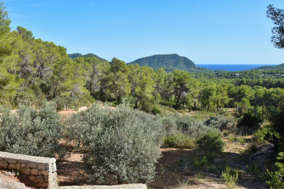 https://www.white-ibiza.com/wp-content/uploads/2021/03/GHLibiza_Gouldheinzlang_property_ibiza__Villa-Ibiza-Ibiza-3687-resized.jpg