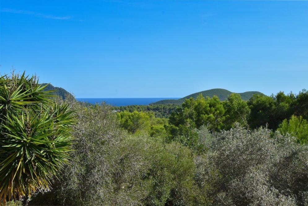 https://www.white-ibiza.com/wp-content/uploads/2021/03/GHLibiza_Gouldheinzlang_property_ibiza__Villa-Ibiza-Ibiza-3705-resized.jpg