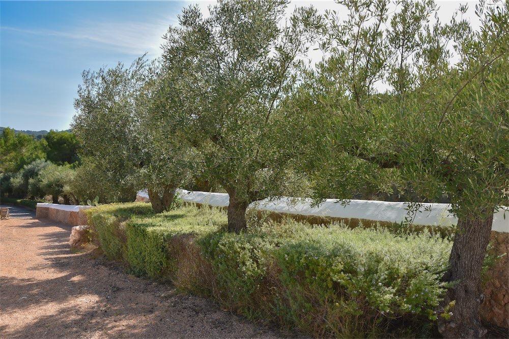 https://www.white-ibiza.com/wp-content/uploads/2021/03/GHLibiza_Gouldheinzlang_property_ibiza__Villa-Ibiza-Ibiza-3708-resized.jpg