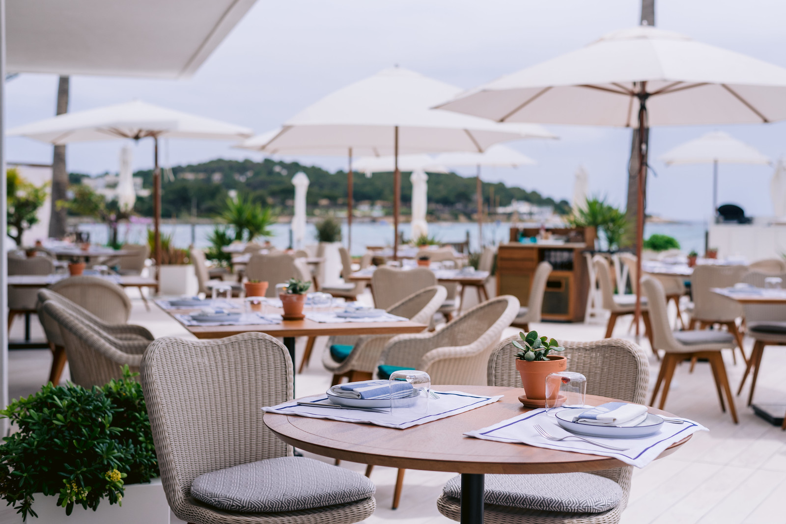 https://www.white-ibiza.com/wp-content/uploads/2021/06/white-ibiza-restaurants-bibo-ibiza-bay-13.jpg